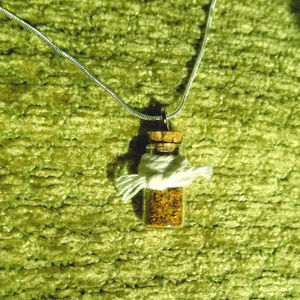 Wiccan Protection Spell Charm Necklace